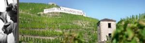Le Domaine Chapoutier parcelles