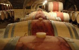 dégustation des Bordeaux Primeurs 2012