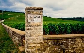 The-Queen-Romanée-Conti