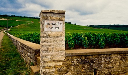 The-Queen-Romanée-Conti
