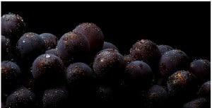 Vins d'assemblages et vins monocépages