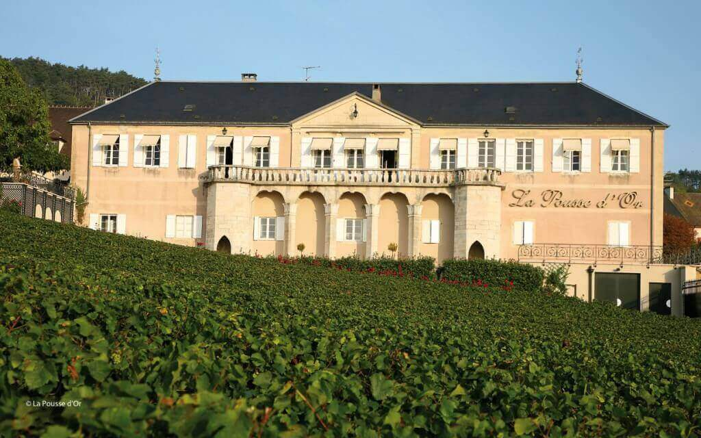 Le Domaine de la Pousse d'or (Bourgogne) vu depuis les vignes