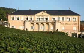 Le Domaine de la Pousse dor (Bourgogne) vu depuis les vignes