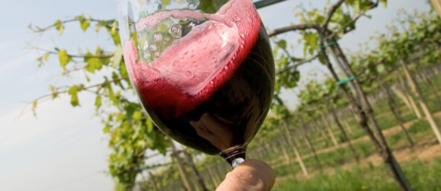 Bordeaux Primeurs 2010 : les dégustations ont commencé