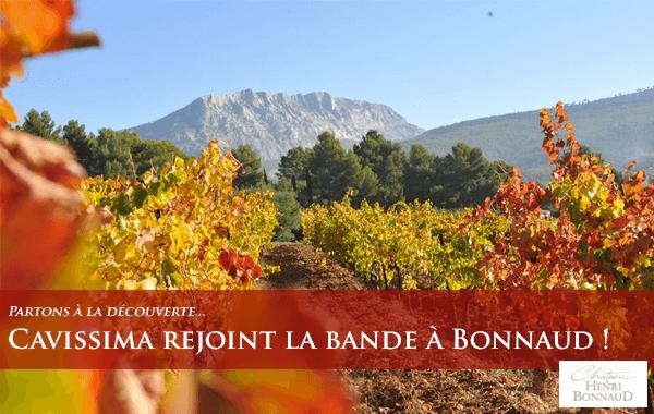 Le Château Henri domaine possède un domaine de 10 hectares tout en agriculture biologique. La vinification est faite dans des fûts de chênes neufs.