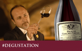 Découvrez la dégustation du Louis Jadot Bourgogne Beaune 1er Cru, Clos des Ursules 2009