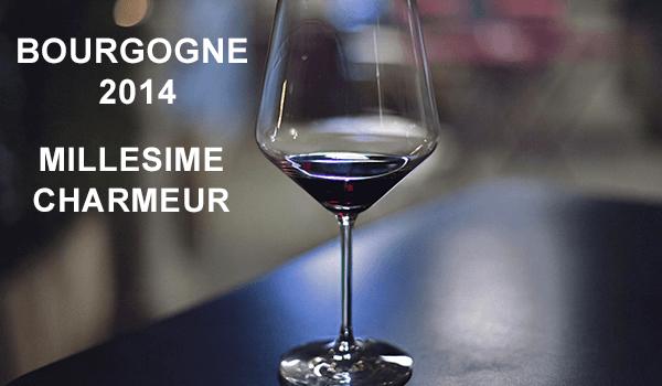 Bourgogne 2014, un millésime charmeur