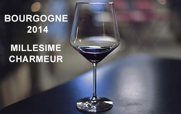 Bourgogne-2014-charmeur-