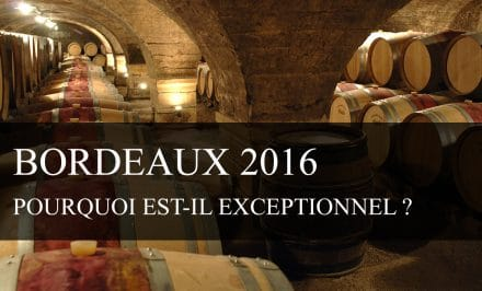 Pourquoi le Bordeaux 2016 est-il exceptionnel ?