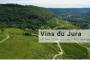 vins-du-jura-un-peu-d-or-au-coeur-des-montagnes (1)