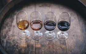 Dégustation vins