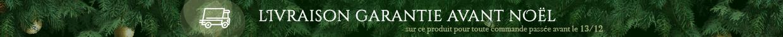 livraison garantie avant Noël