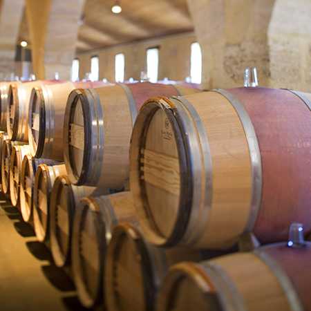 Dans la cave du Château Calon-Ségur