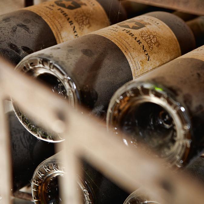 Repos des vins dans les chais